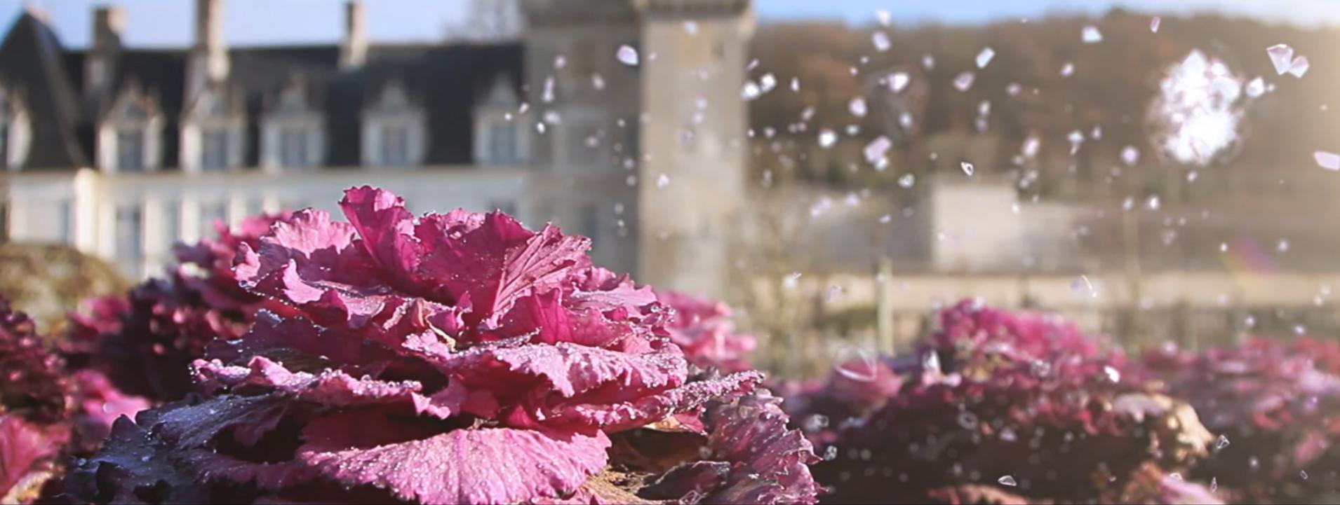Plan vidéo Jardin de Villandry par Dripmoon